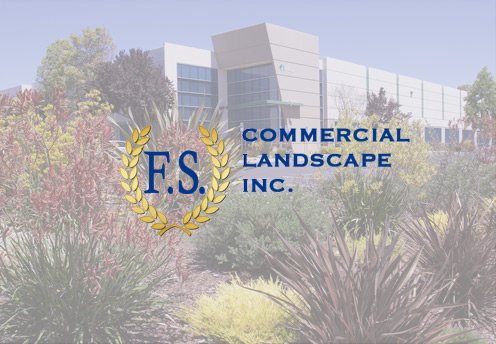 landscaper marketing company Orange County CA